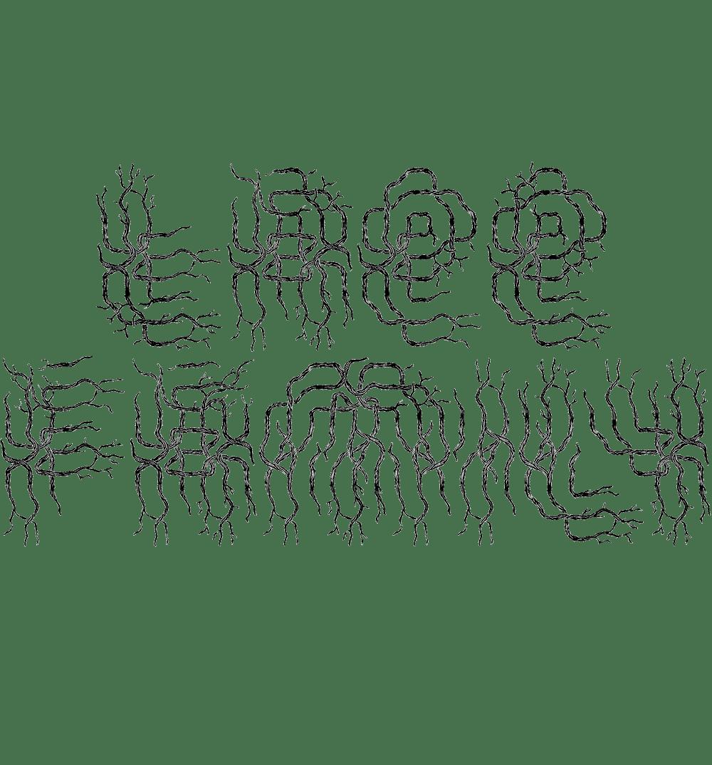 baptiste-vandaele-fanzine2
